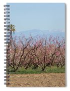 Blossom Trail 1 Spiral Notebook