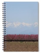 Blossom Trail 2 Spiral Notebook