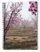Blossom Trail Spiral Notebook