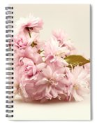 Blossoming Cherry Twig Spiral Notebook