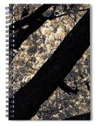 Blossoming In Santa Fe Spiral Notebook