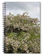 Blossoming Tree Spiral Notebook
