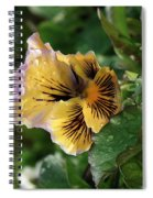 Blossoms And Waterdrops  Spiral Notebook
