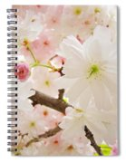 Blossoms Art Print 53 Sunlit Pink Tree Blossoms Macro Springtime Blue Sky  Spiral Notebook