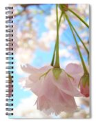 Blossoms Art Prints 52 Pink Tree Blossoms Nature Art Blue Sky Spiral Notebook