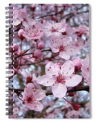 Blossoms Art Prints Nature Pink Tree Blossoms Baslee Troutman Spiral Notebook