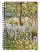 Blossoms Growing In A Fruit Orchard In Spiral Notebook