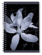 Blossoms In Black And White Spiral Notebook