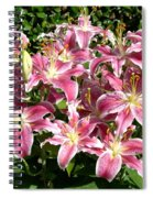 Blossoms Of Chase Lane Spiral Notebook