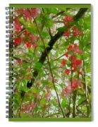 Blossoms Of Spring Time Spiral Notebook