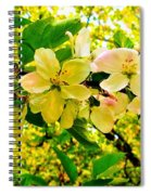 Blossoms Of Sunshine Spiral Notebook