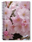 Blossoms On Bark Spiral Notebook