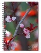 Blossoms Petite Spiral Notebook