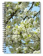 Blossoms Whtie Tree Blossoms 29 Nature Art Prints Spring Art Spiral Notebook