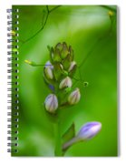 Blossom Dream Spiral Notebook