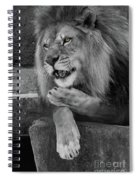 Blow You A Kiss  Black And White  T O C Spiral Notebook