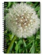 Blowball 1 Spiral Notebook