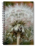 Blowball 2 Spiral Notebook
