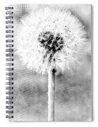 Blowing In The Wind Pencil Effect Spiral Notebook