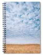 Blue And Amber Spiral Notebook