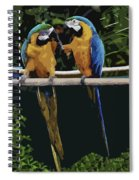 Blue And Gold Macaw 1 Spiral Notebook