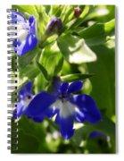 Blue And White Lobelia Spiral Notebook