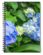 Blue And Yellow Hortensia Flowers Spiral Notebook