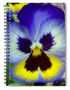 Blue And Yellow Pansy Spiral Notebook