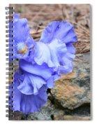 Blue Angel - Iris Spiral Notebook