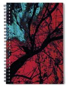 Wings Of Yoga Spiral Notebook