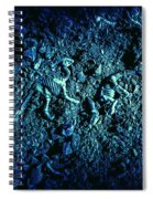 Blue Archaeology Spiral Notebook