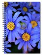 Blue Asters Spiral Notebook