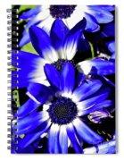 Blue Beauties Spiral Notebook