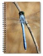 Blue Beauty Spiral Notebook