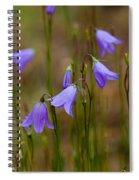 Blue Bells Wyoming Spiral Notebook