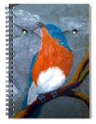 Blue Bird On Slate Spiral Notebook