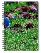 Blue Birds In Winter Spiral Notebook