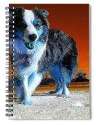 Blue Blue Spiral Notebook