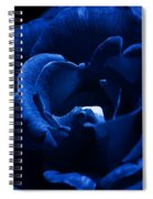 Blue Blue Rose Spiral Notebook