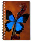 Blue Butterfly On Violin Spiral Notebook