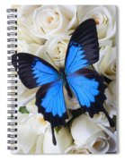 Blue Butterfly On White Roses Spiral Notebook