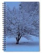 Blue Christmas Spiral Notebook