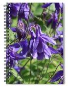 Blue Columbine Spiral Notebook