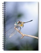 Blue Dasher Dragonfly Spiral Notebook