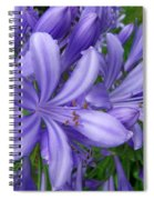 Blue Delight Spiral Notebook