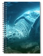 Blue Depths Sea Turtle Spiral Notebook