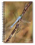 Blue Dragonfly Portrait Spiral Notebook