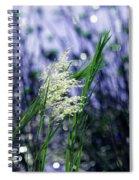 Blue Dreams Of Sunlight Spiral Notebook