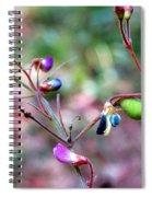 Blue Dwarf Blossom Spiral Notebook