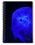 Blue Energy - Jellyfish Spiral Notebook